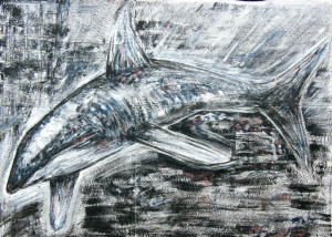 Greed-of-the-shark